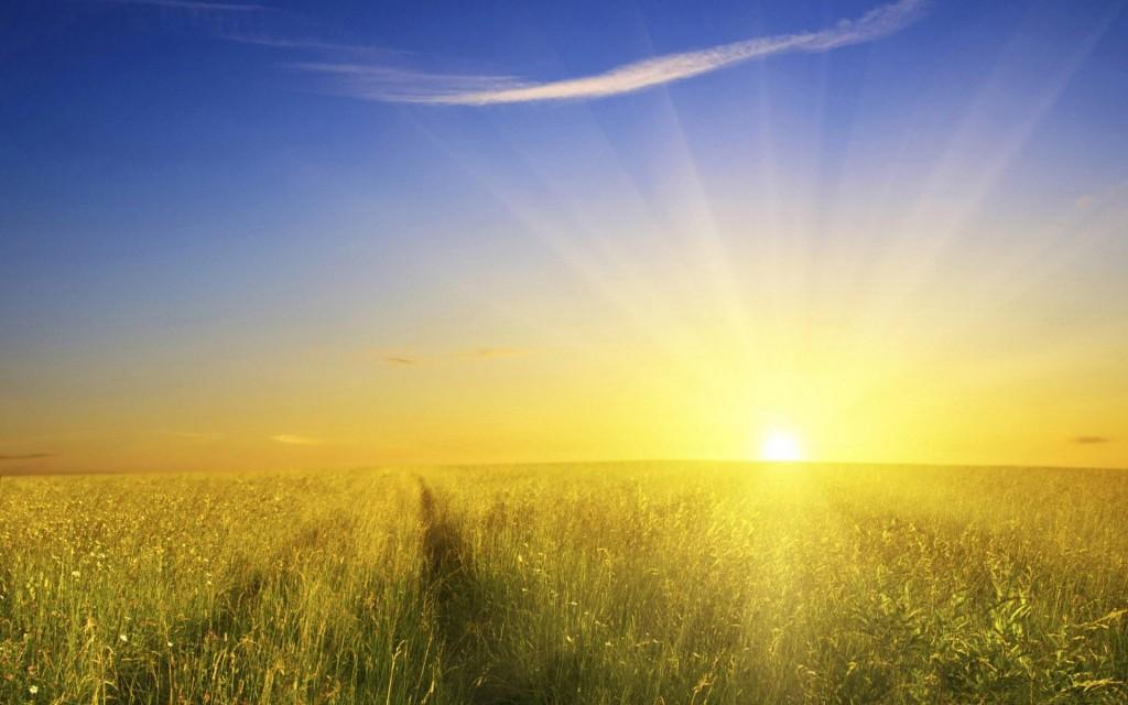 D-vitamin: a napfény vitamin
